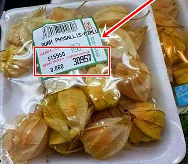 ciplukan-harganya-rp500-ribu per kg 2